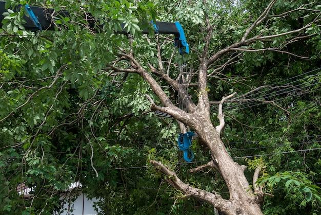 Grue, levage, arbre cassé