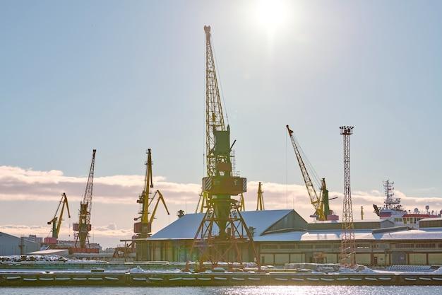 Grues portuaires massives dans le port maritime