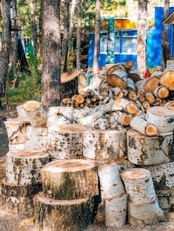 Grumes d'un arbre le bois scié