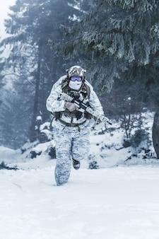Guerre des montagnes arctiques d'hiver