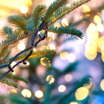 Guirlande de vacances sur arbre de noël avec arrière-plan flou