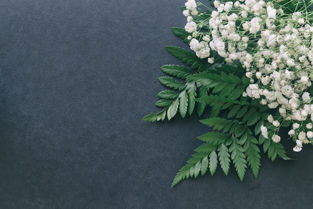 Gypsophile fleur de souffle de bébé blanc sur fond noir