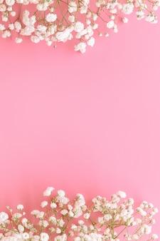 Gypsophile haleine de bébé blanc sur rose pastel