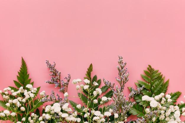 Gypsophile haleine de bébé blanche et feuille verte sur rose pastel