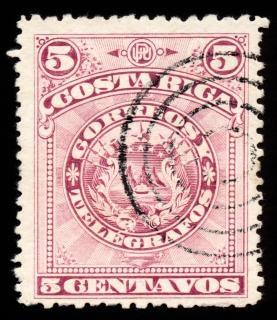 Habit violet du timbre bras