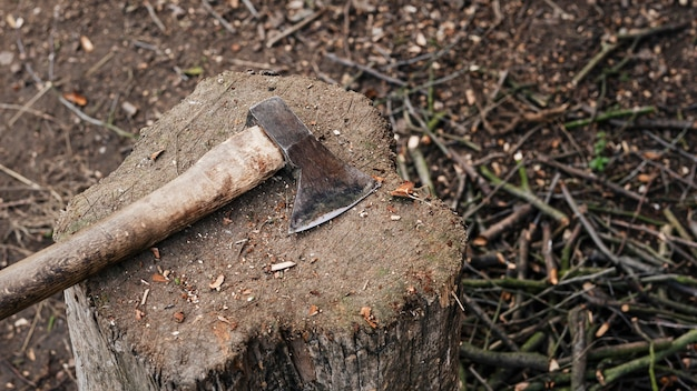 Hache sur une souche d'arbre