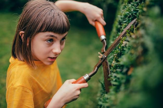 Haie d'élagage fille avec cisailles à main