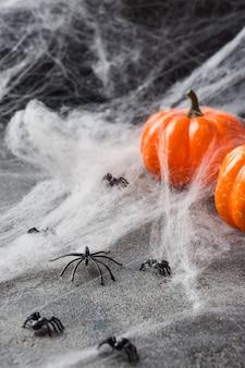 Halloween avec citrouilles colorées et toile d'araignée