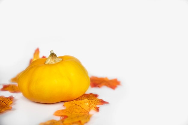 Halloween jack o lantern avec feuillage d'automne isolé sur fond blanc tête de citrouille sur coloful