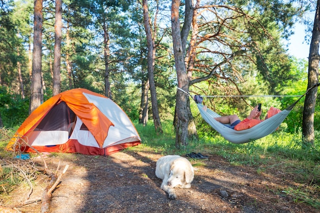 Hamacs sur les arbres dans le camping forestier