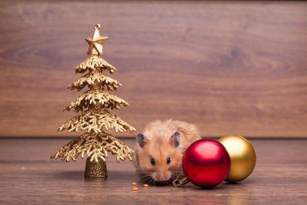Hamster mignon avec bonnet de noel sur la table