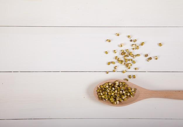 Haricots mungo germés dans une cuillère en bois