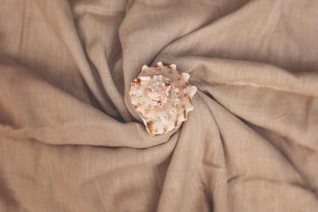 Harmonieusement arrangé grand beau coquillage sur fond d'été de textiles de lin