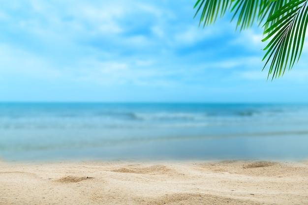 Haut de la table en bois avec fond de mer et palmiers floue