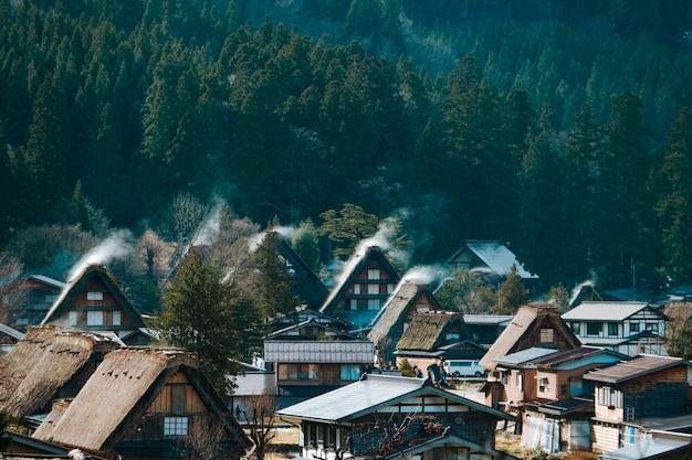Haute vue angle, de, sirakawago, et, vert, forêt, gifu, japon le très célèbre patrimoine touristique
