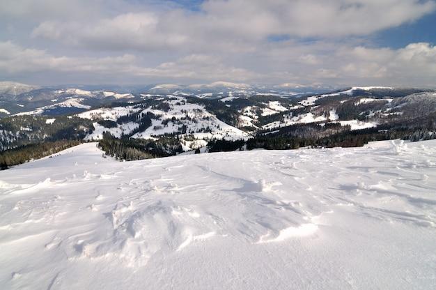 Hautes collines, épinettes et pins couverts de neige