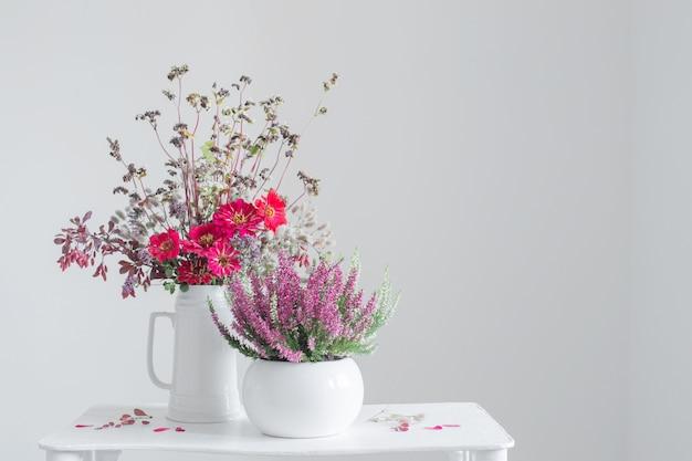 Heather en pot de fleurs et bouquet dans un vase sur fond blanc