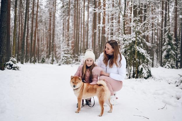 Héhé, jeune mère et petite fille mignonne en vêtements chauds roses marchant s'amusant avec un chien shiba inu rouge dans la forêt d'hiver froid blanc neigeux à l'extérieur. activités de vacances sportives en famille.