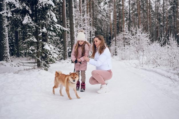 Héhé, jeune mère et petite fille mignonne en vêtements chauds roses marchant s'amusant avec chien shiba inu rouge dans la forêt d'hiver froid blanc neigeux à l'extérieur