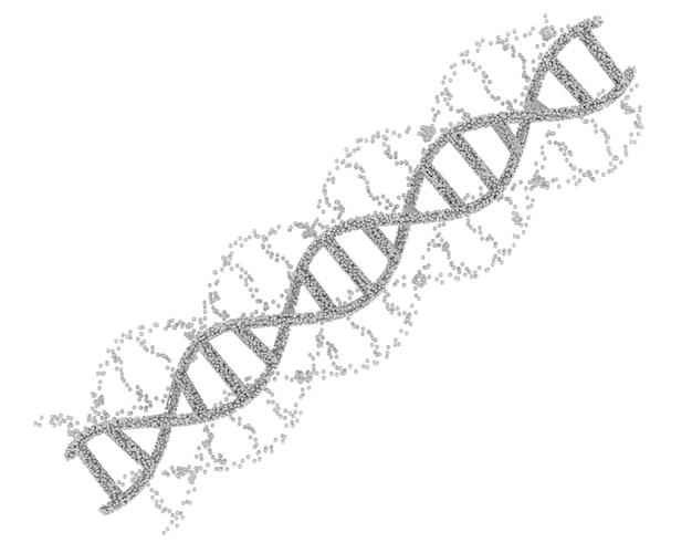 Hélice d'adn blanche de rendu 3d ou structure d'adn