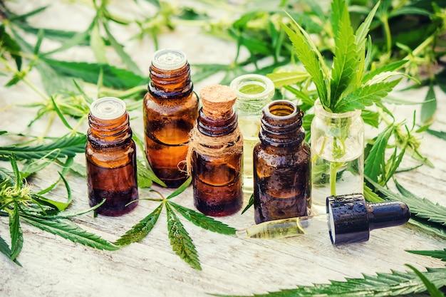 Herbe de cannabis et feuilles pour traitement bouillon, teinture, extrait, huile.