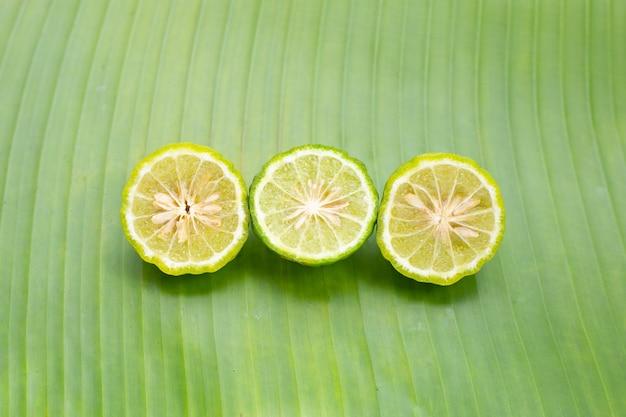 Herbe de citron vert bergamote sur feuille de bananier