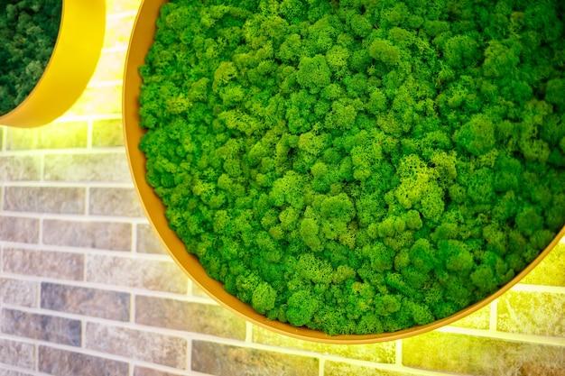 Herbe décorative à l'intérieur sur un mur de briques
