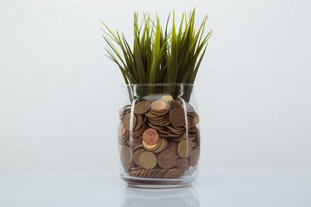 Herbe poussant sur des pièces en banque