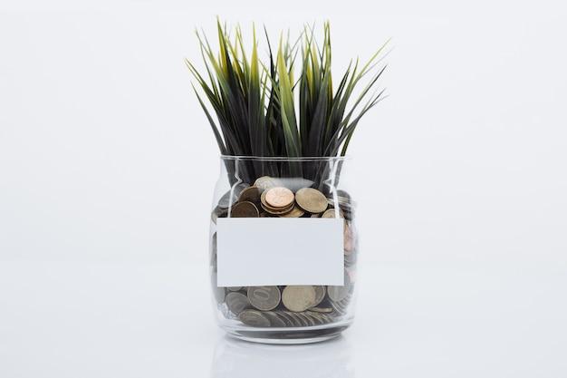 Herbe poussant sur des pièces de monnaie dans une banque de verre. concept d'épargne