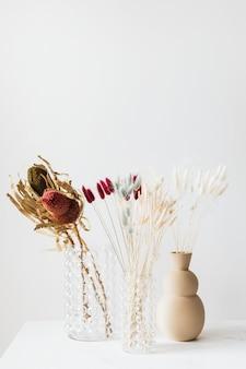 Herbe de queue de lapin séchée dans des vases