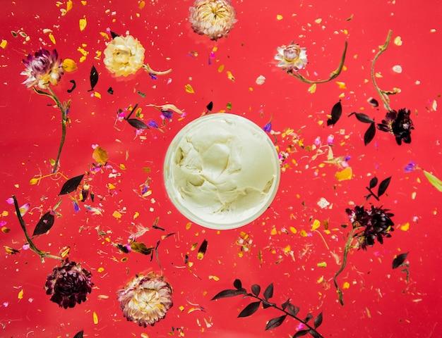 Herbe sèche de bellis avec des fleurs et de la crème de soin de la peau sur fond rouge isolé. sans ombres