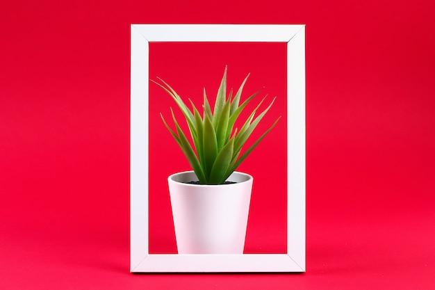 Herbe verte artificielle dans un petit pot blanc dans un cadre blanc sur un fond bordeaux rouge.