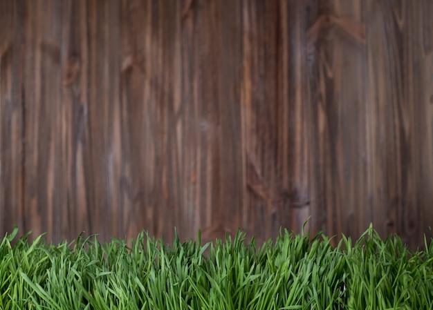 Herbe verte sur fond de bois.