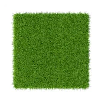 L'herbe verte. fond de texture naturelle. herbe verte printanière. fermer.