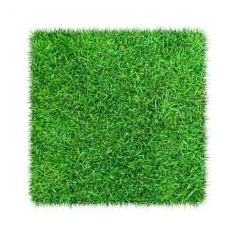 L'herbe verte. fond de texture naturelle. herbe verte printanière. isolé sur fond blanc
