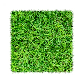 L'herbe verte. fond de texture naturelle. herbe verte printanière