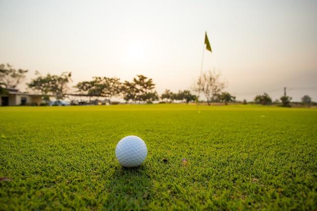 Herbe verte avec gros plan de balle de golf en flou au soleil. aire de jeux sportive pour concept de club de golf