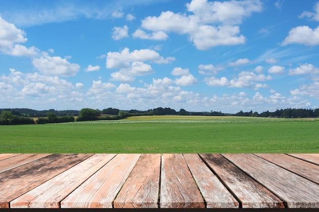 Herbe verte printanière avec ciel bleu et plancher en bois