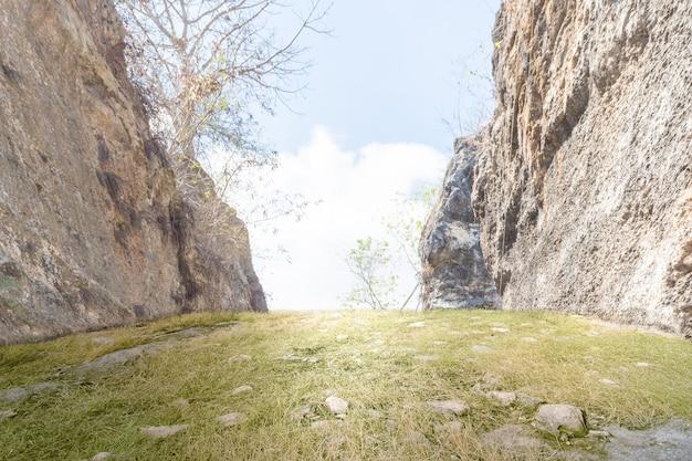 Herbe verte avec des rochers et un ciel bleu