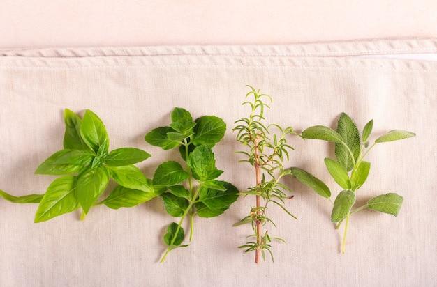 Herbes biologiques cultivées à la maison pour la cuisine
