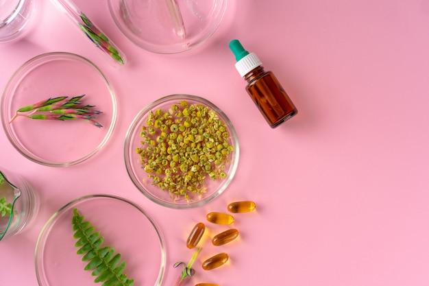 Herbes et compléments alimentaires à base de plantes vue de dessus sur fond rose