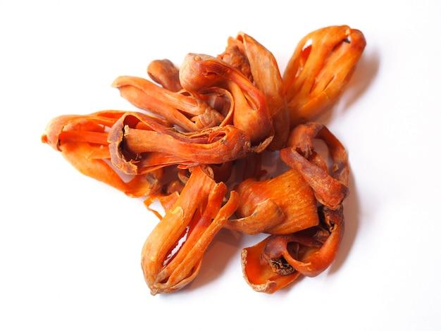 Herbes et épices à la muscade fleur séchée (mace) myristica fragrans,
