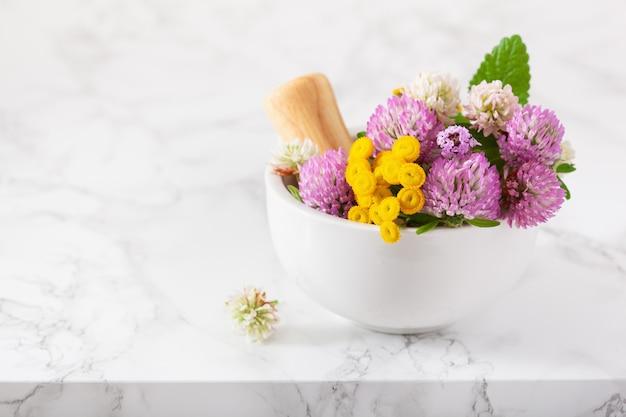 Herbes de fleurs médicales dans un mortier. médecine douce. trèfle tanaisie thym melissa