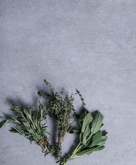 Herbes sur fond gris