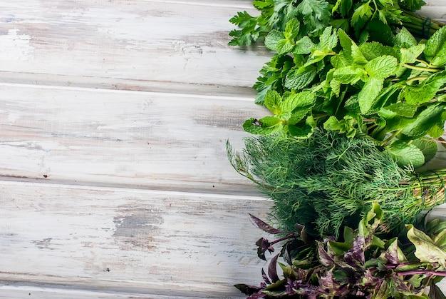 Herbes fraîches et épicées, aneth, basilic, persil, menthe