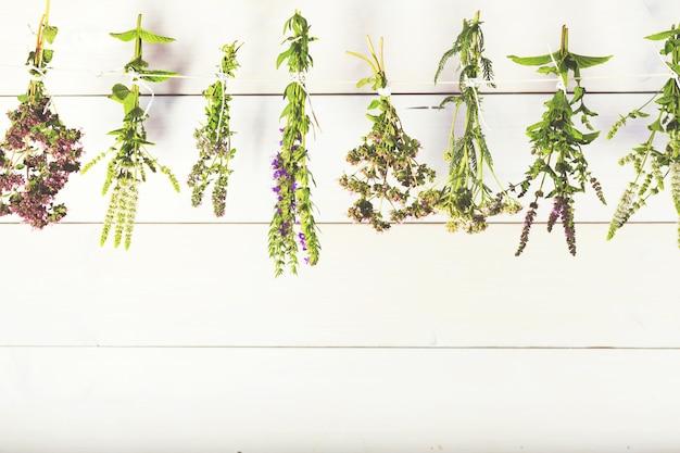 Herbes fraîches isolées sur fond en bois blanc. un concept d'homéopathie avec la médecine homéopathique. cuisine, herbes médicinales, menthe, thym, hysope, origan