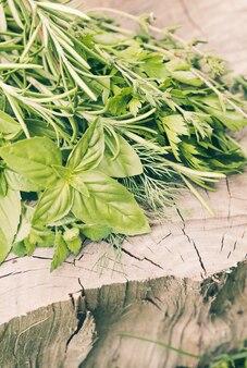 Herbes fraîches en plein air sur le fond en bois