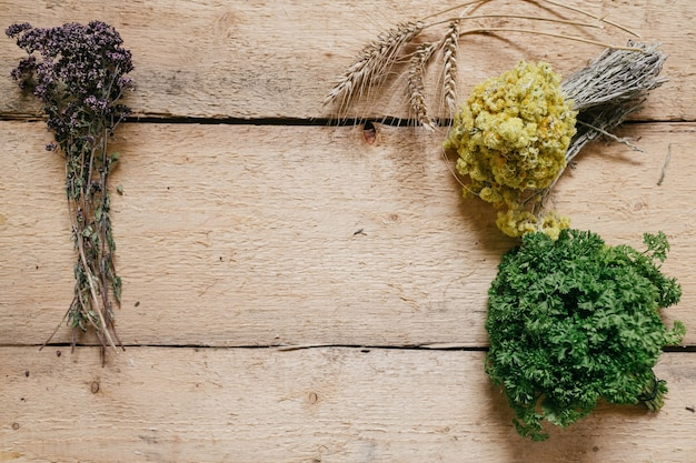 Herbes fraîches et séchées disposées sur le bord sur un bois