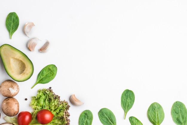 Herbes et légumes sur fond blanc