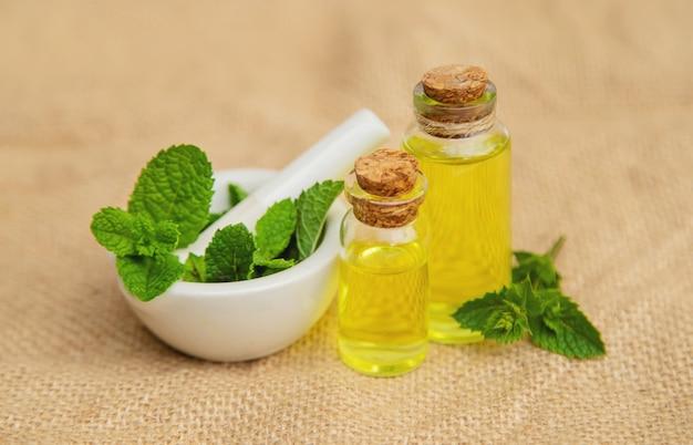 Herbes medicinales. médecine et santé.